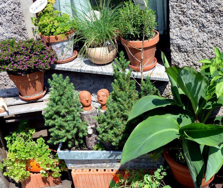 Während An Anderer Stelle In Meinem Garten Keramiken In Natürlichen  Farbtönen Vorherrschen.